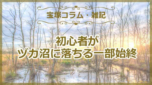 宝塚初心者がヅカ沼に落ちる一部始終