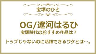 宝塚歌劇団OGの遼河はるひさんについて