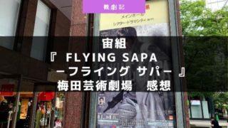 宝塚宙組『FLYING SAPA -フライング サパ-』の感想!ネタバレあり